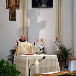 friar at mass