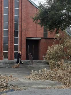 tree debris by church