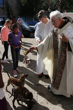 Priest blessing dogs