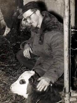 Friar with calf