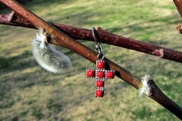 Earring on Pussywillow